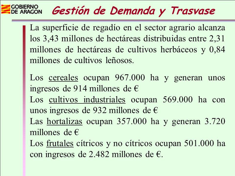 La superficie de regadío en el sector agrario alcanza los 3,43 millones de hectáreas distribuidas entre 2,31 millones de hectáreas de cultivos herbáce
