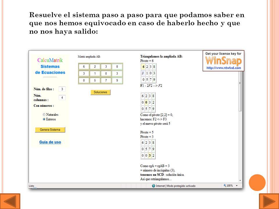 Este es el programa de resolución de sistemas: