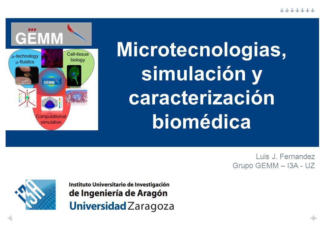 Microtecnologias, simulación y caracterización biomédica Luis J. Fernandez Grupo GEMM – I3A - UZ
