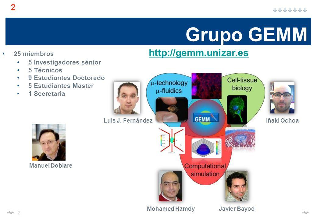 Grupo GEMM 2 2 Manuel Doblaré Iñaki OchoaLuis J.