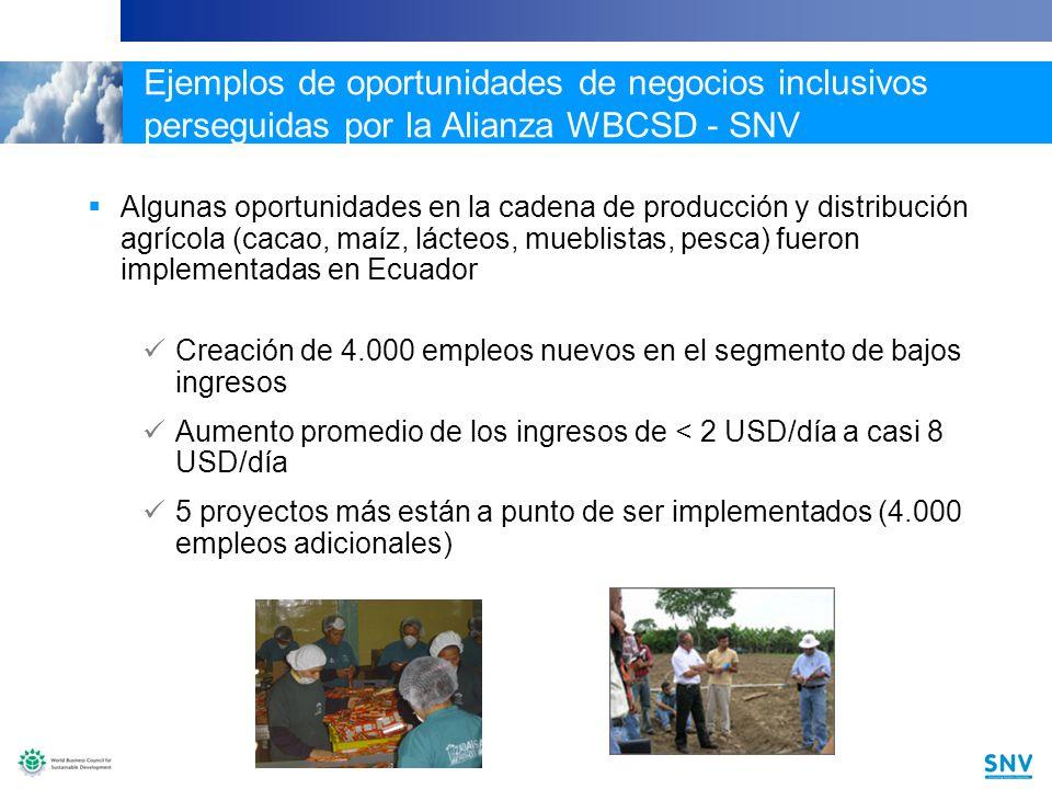 15 Ejemplos de oportunidades de negocios inclusivos perseguidas por la Alianza WBCSD - SNV Algunas oportunidades en la cadena de producción y distribución agrícola (cacao, maíz, lácteos, mueblistas, pesca) fueron implementadas en Ecuador Creación de 4.000 empleos nuevos en el segmento de bajos ingresos Aumento promedio de los ingresos de < 2 USD/día a casi 8 USD/día 5 proyectos más están a punto de ser implementados (4.000 empleos adicionales)