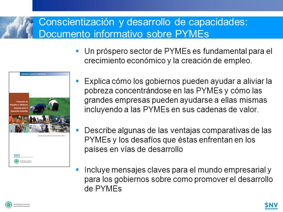 19 Conscientización y desarrollo de capacidades: Documento informativo sobre PYMEs Un próspero sector de PYMEs es fundamental para el crecimiento económico y la creación de empleo.