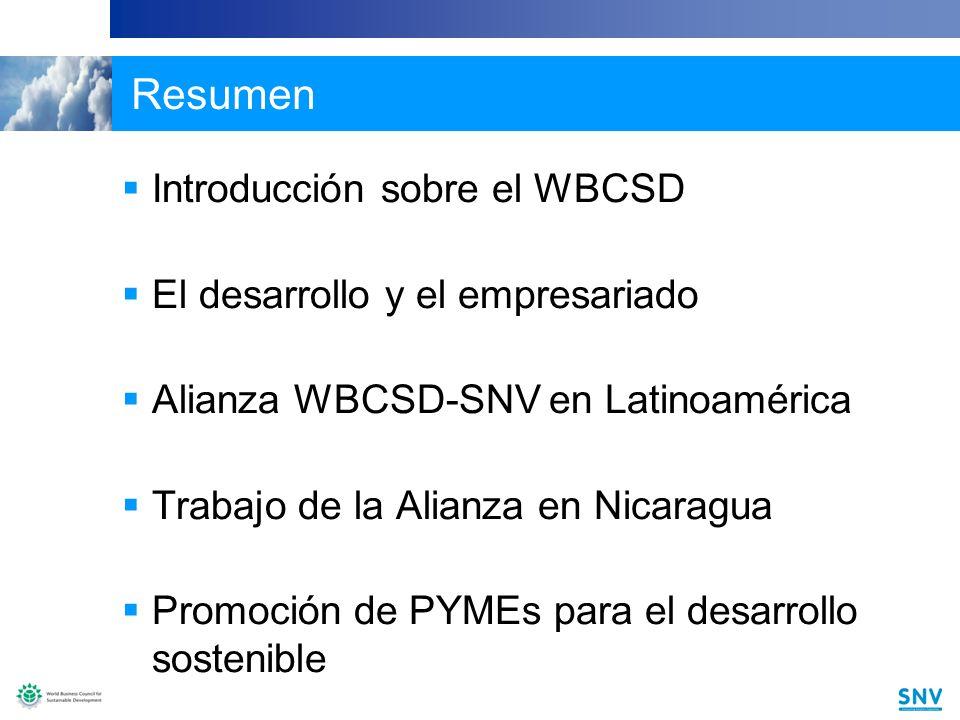 13 Logros hasta la fecha Se desarrolló una buena relación de trabajo entre las partes: Las oficinas locales de SNV y los socios de la Red Regional del WBCSD se comprometieron plenamente y lograron un excelente alcance.