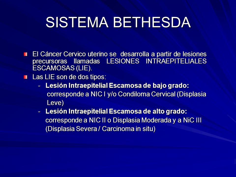 SISTEMA BETHESDA El Cáncer Cervico uterino se desarrolla a partir de lesiones precursoras llamadas LESIONES INTRAEPITELIALES ESCAMOSAS (LIE). Las LIE