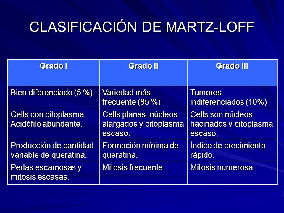 CLASIFICACIÓN DE MARTZ-LOFF Grado I Grado II Grado III Bien diferenciado (5 %) Variedad más frecuente (85 %) Tumores indiferenciados (10%) Cells con c