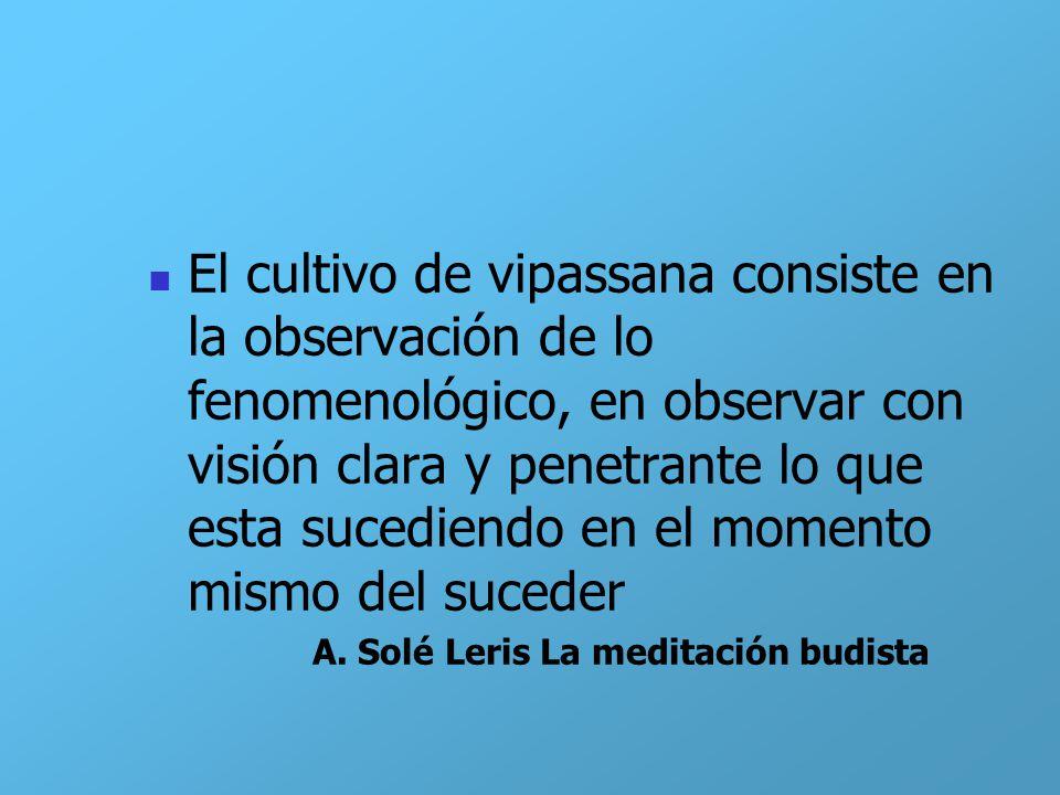 El cultivo de vipassana consiste en la observación de lo fenomenológico, en observar con visión clara y penetrante lo que esta sucediendo en el moment
