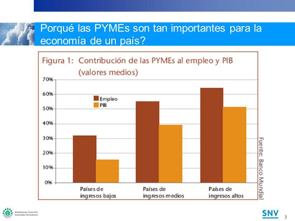 3 3 Porqué las PYMEs son tan importantes para la economía de un país?