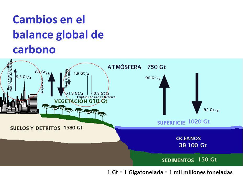 Fuente: IPCC 2004 Cambios en el balance global de carbono 1 Gt = 1 Gigatonelada = 1 mil millones toneladas