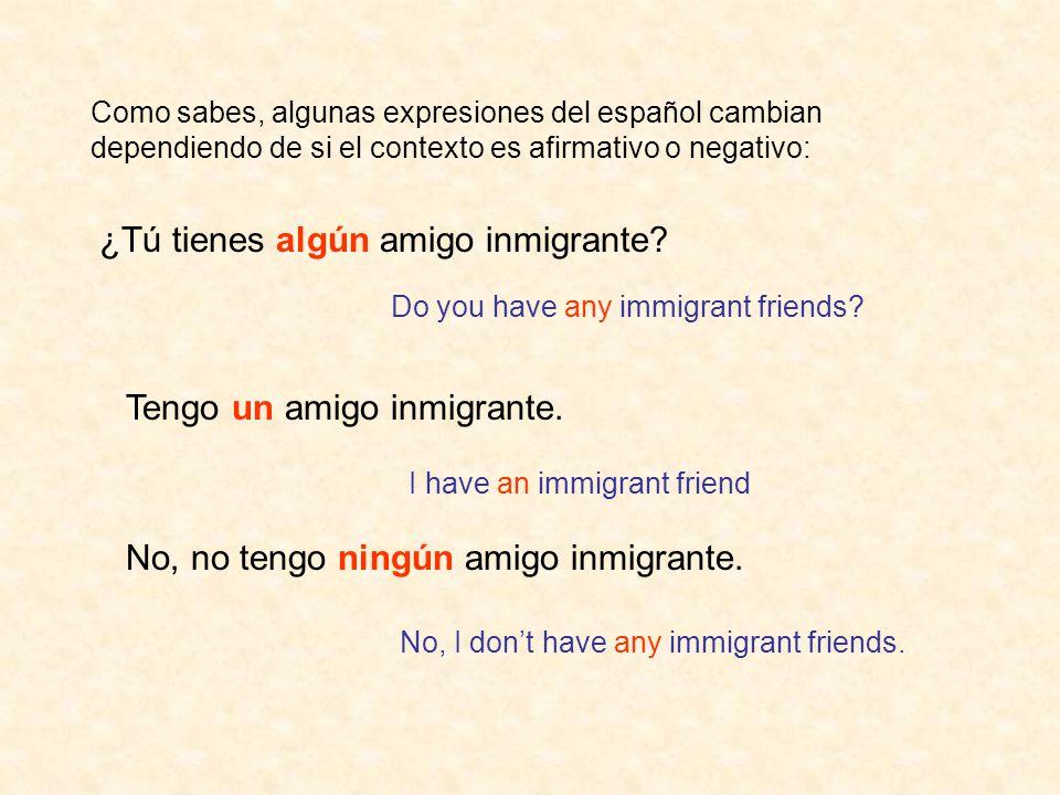 Tengo un amigo inmigrante. ¿Tú tienes algún amigo inmigrante? No, no tengo ningún amigo inmigrante. Do you have any immigrant friends? I have an immig