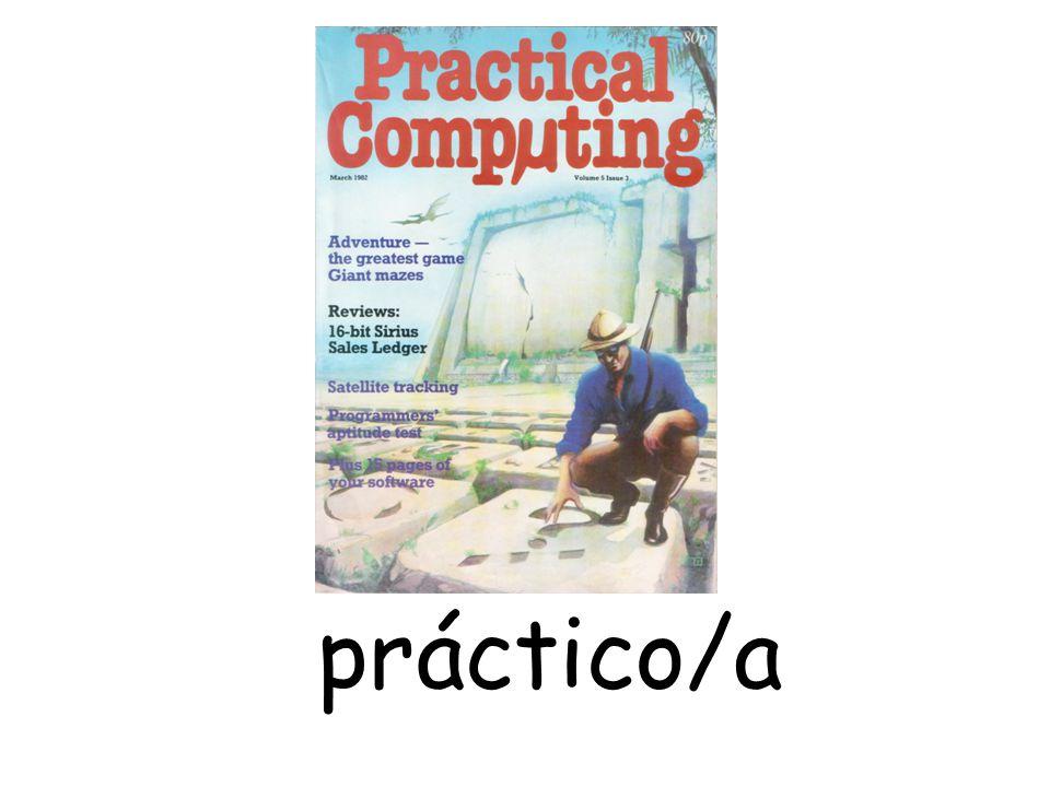 práctico/a