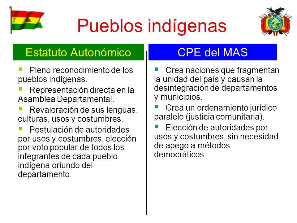 Pueblos indígenas Pleno reconocimiento de los pueblos indígenas. Representación directa en la Asamblea Departamental. Revaloración de sus lenguas, cul