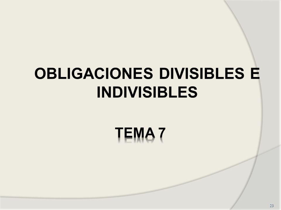 23 OBLIGACIONES DIVISIBLES E INDIVISIBLES