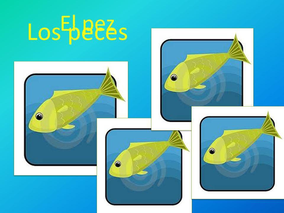 El pez Los peces