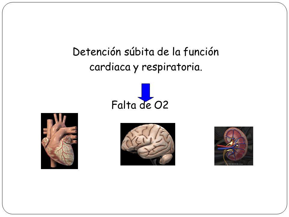Detención súbita de la función cardiaca y respiratoria. Falta de O2