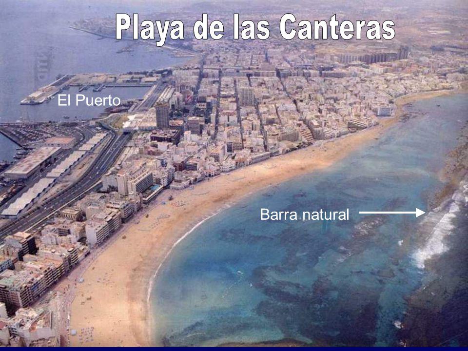 El Jardín Canario Viera y Clavijo
