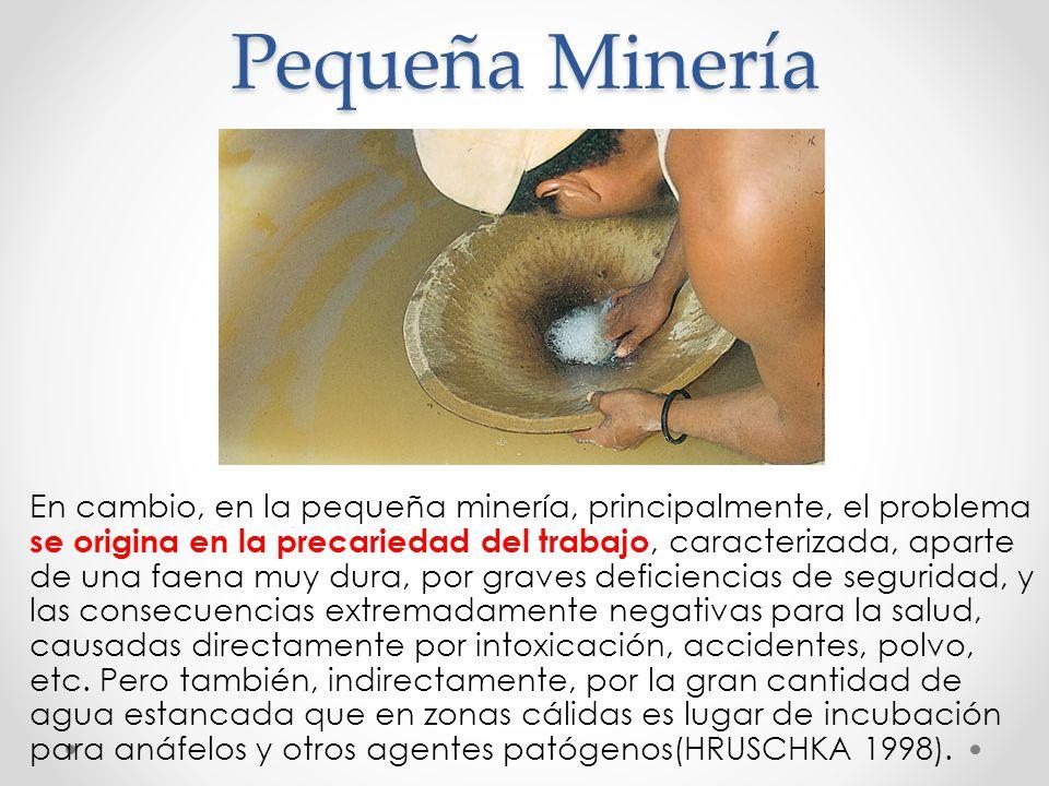 Pequeña Minería En cambio, en la pequeña minería, principalmente, el problema se origina en la precariedad del trabajo, caracterizada, aparte de una f