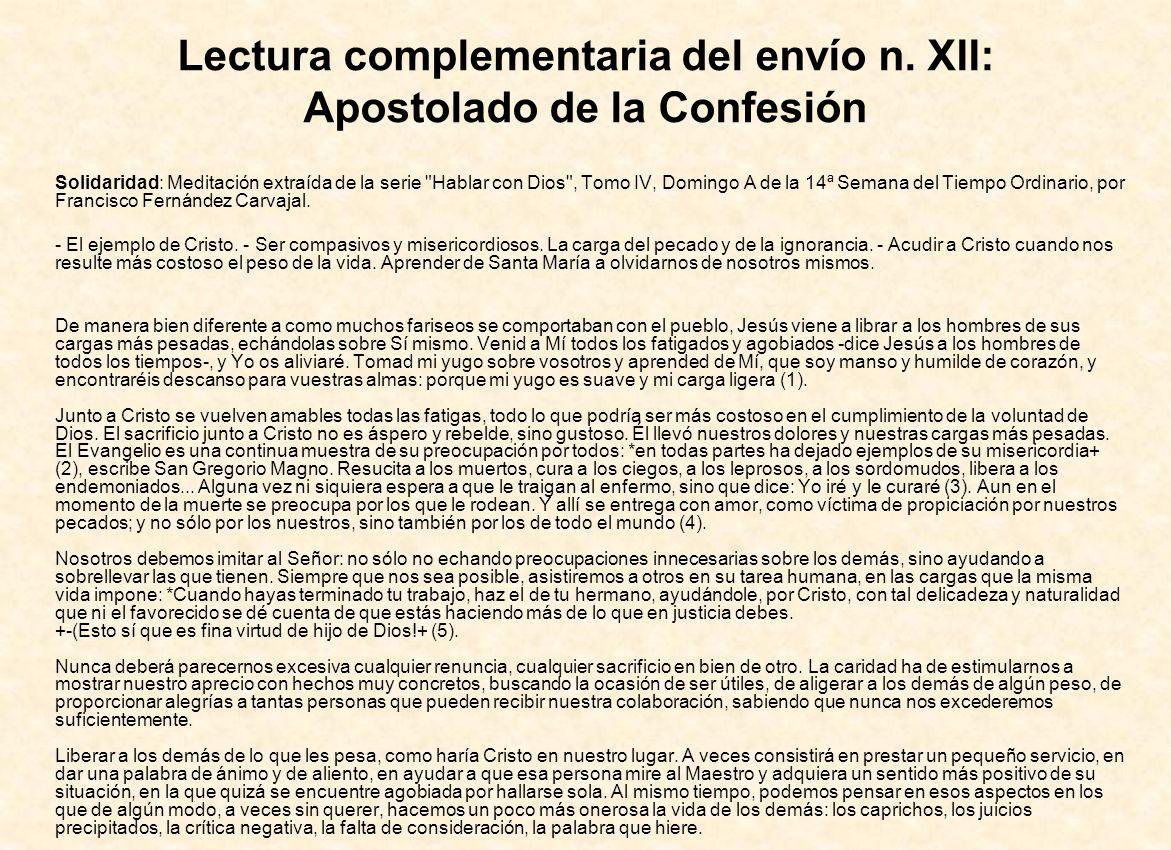 Lectura complementaria del envío n. XII: Apostolado de la Confesión Solidaridad: Meditación extraída de la serie