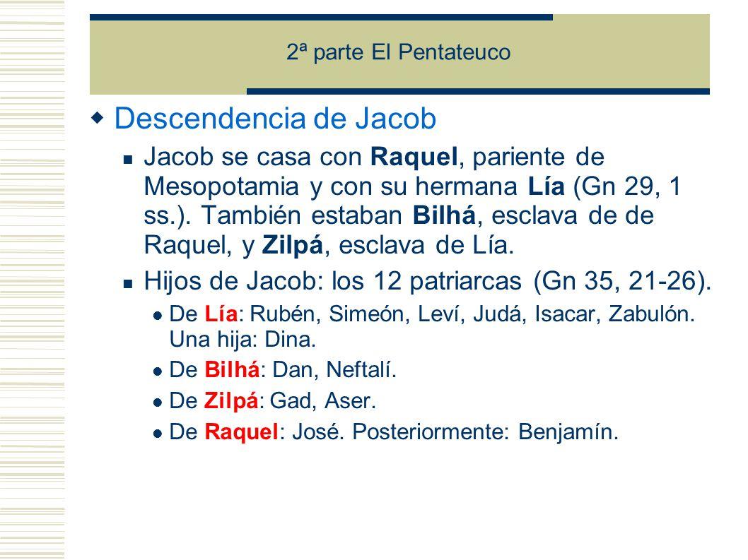 2ª parte El Pentateuco Descendencia de Jacob Jacob se casa con Raquel, pariente de Mesopotamia y con su hermana Lía (Gn 29, 1 ss.).