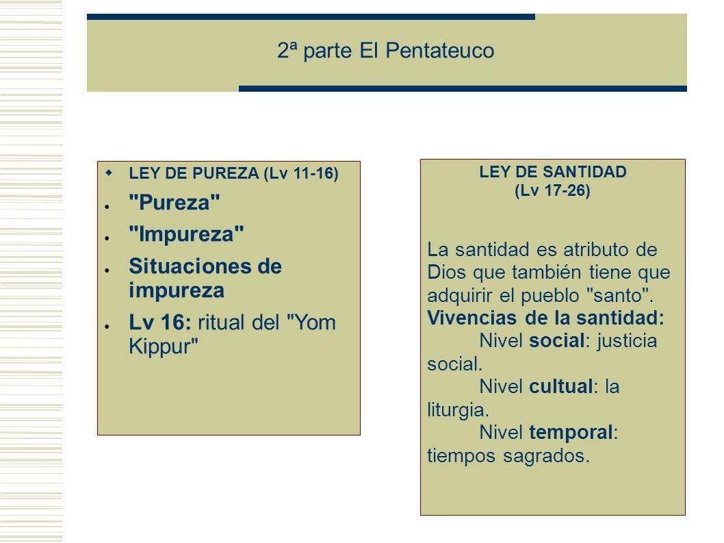 2ª parte El Pentateuco LEY DE PUREZA (Lv 11-16) Pureza Impureza Situaciones de impureza Lv 16: ritual del Yom Kippur LEY DE SANTIDAD (Lv 17-26) La santidad es atributo de Dios que también tiene que adquirir el pueblo santo .
