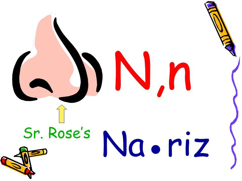 N,n Nariz Sr. Roses
