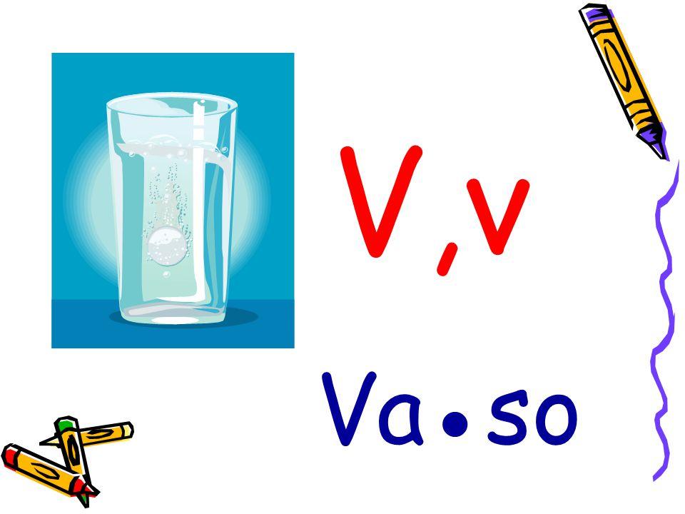 V,v Vaso