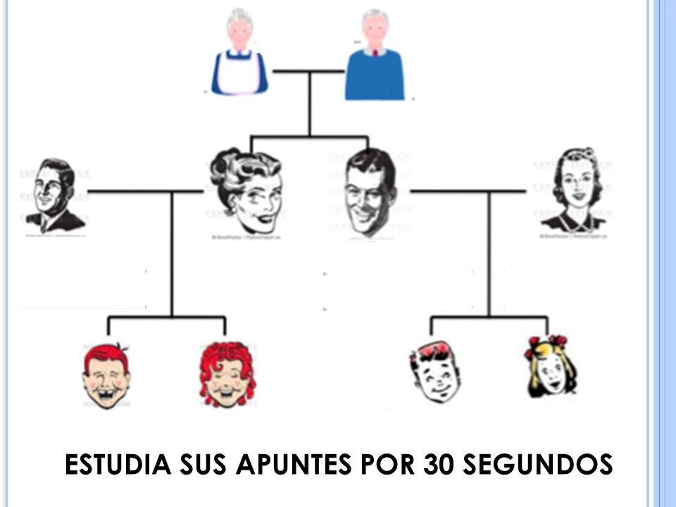 ESTUDIA SUS APUNTES POR 30 SEGUNDOS