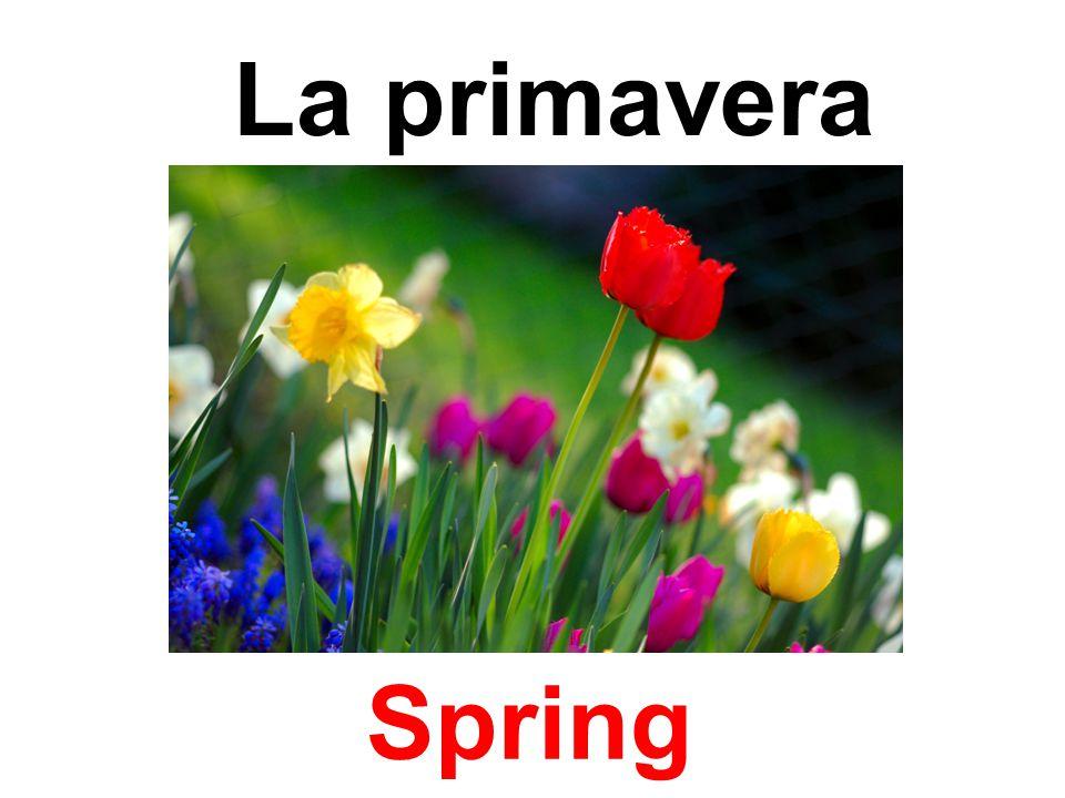 La primavera Spring