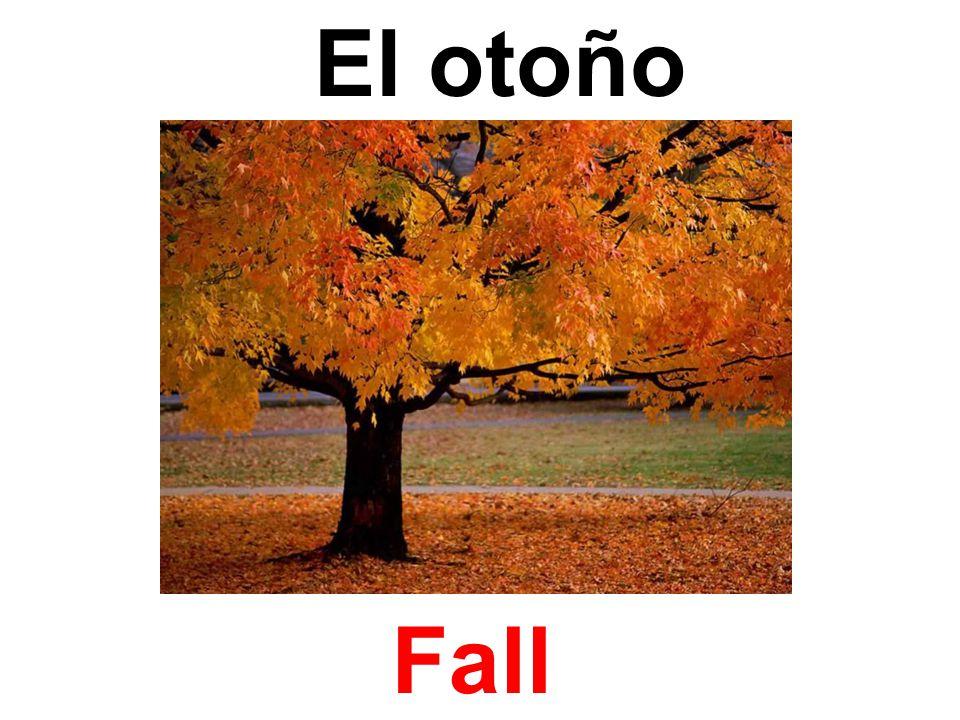 El otoño Fall