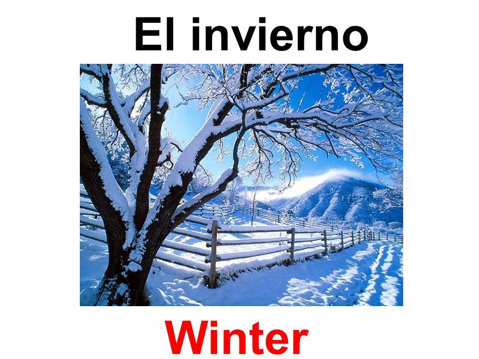 El invierno Winter