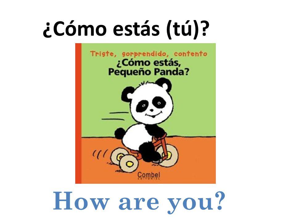 How are you ¿Cómo estás (tú)