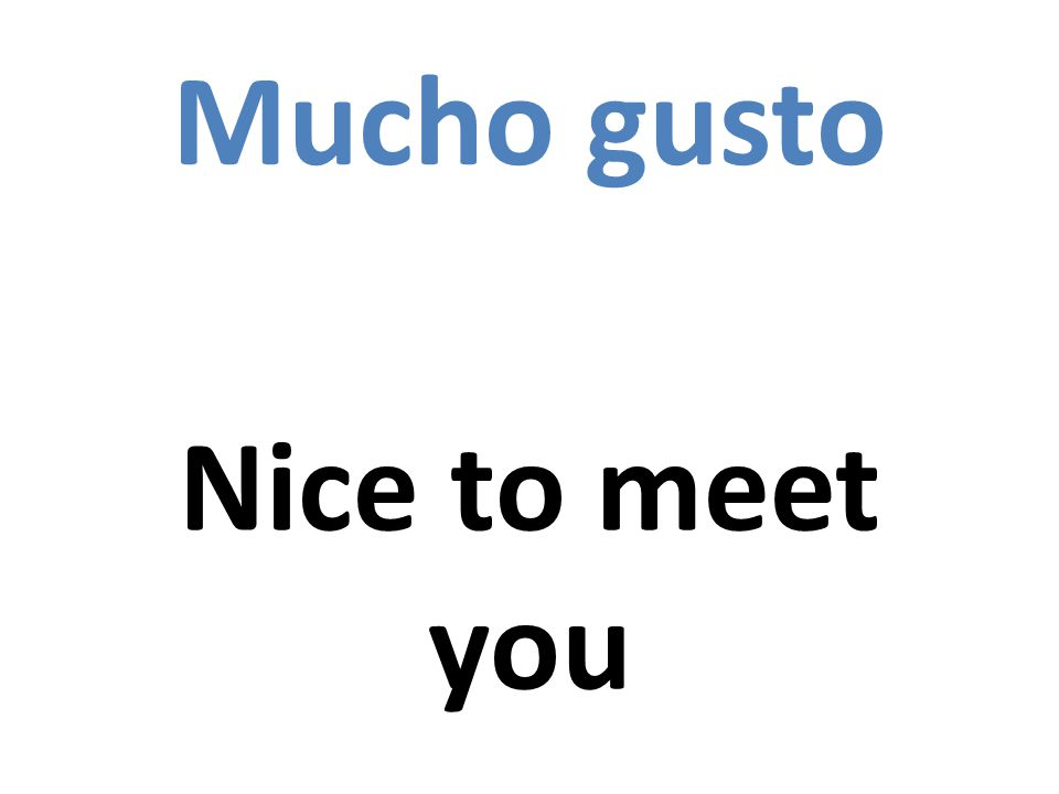 Mucho gusto Nice to meet you