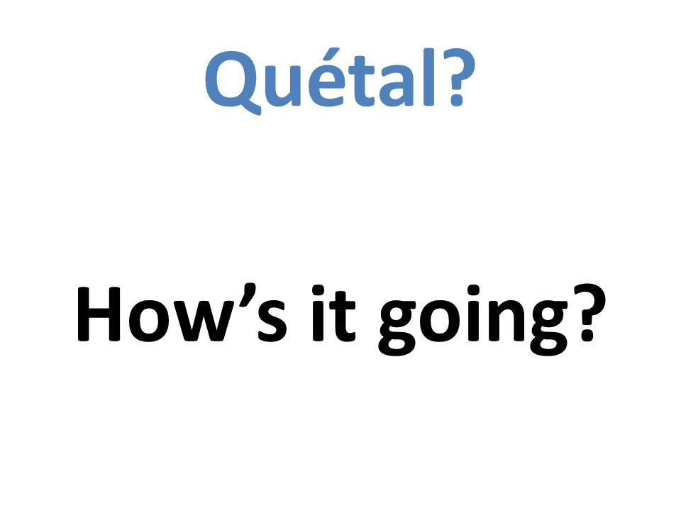 Quétal Hows it going