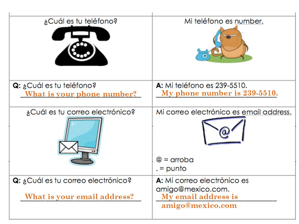 What is your phone number? My phone number is 239-5510. What is your email address?My email address is amigo@mexico.com
