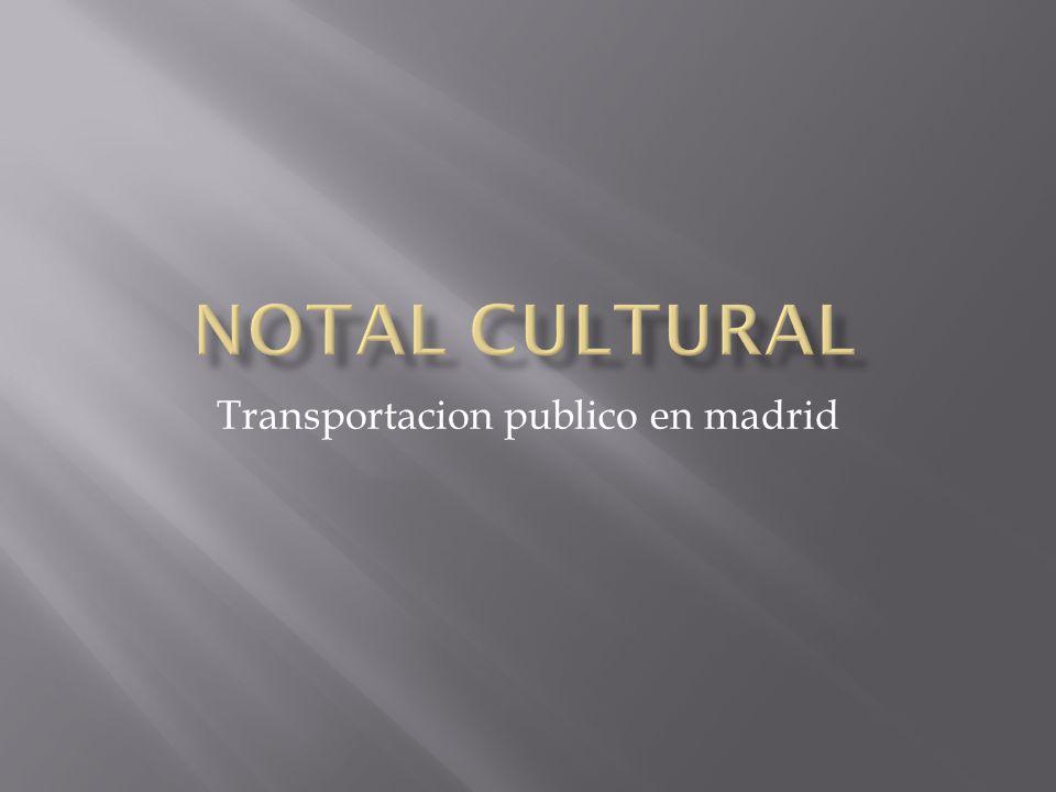 Transportacion publico en madrid
