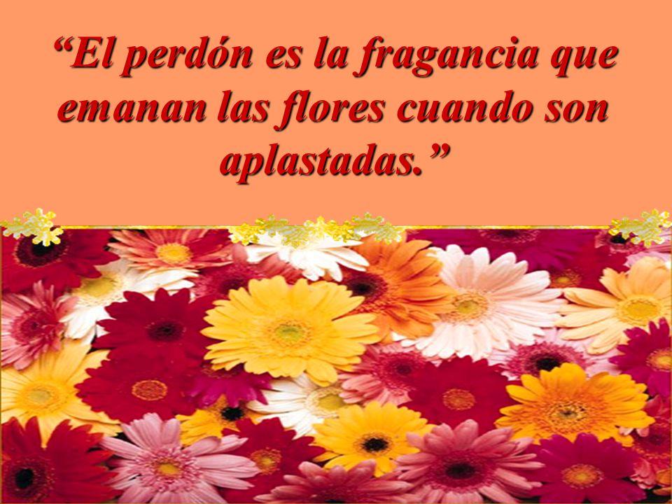 Si perdonan sus faltas a los demás, el Padre que está en el cielo también los perdonará a ustedes.Si perdonan sus faltas a los demás, el Padre que est