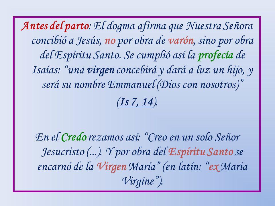 Antes del parto: El dogma afirma que Nuestra Señora concibió a Jesús, no por obra de varón, sino por obra del Espíritu Santo. Se cumplió así la profec