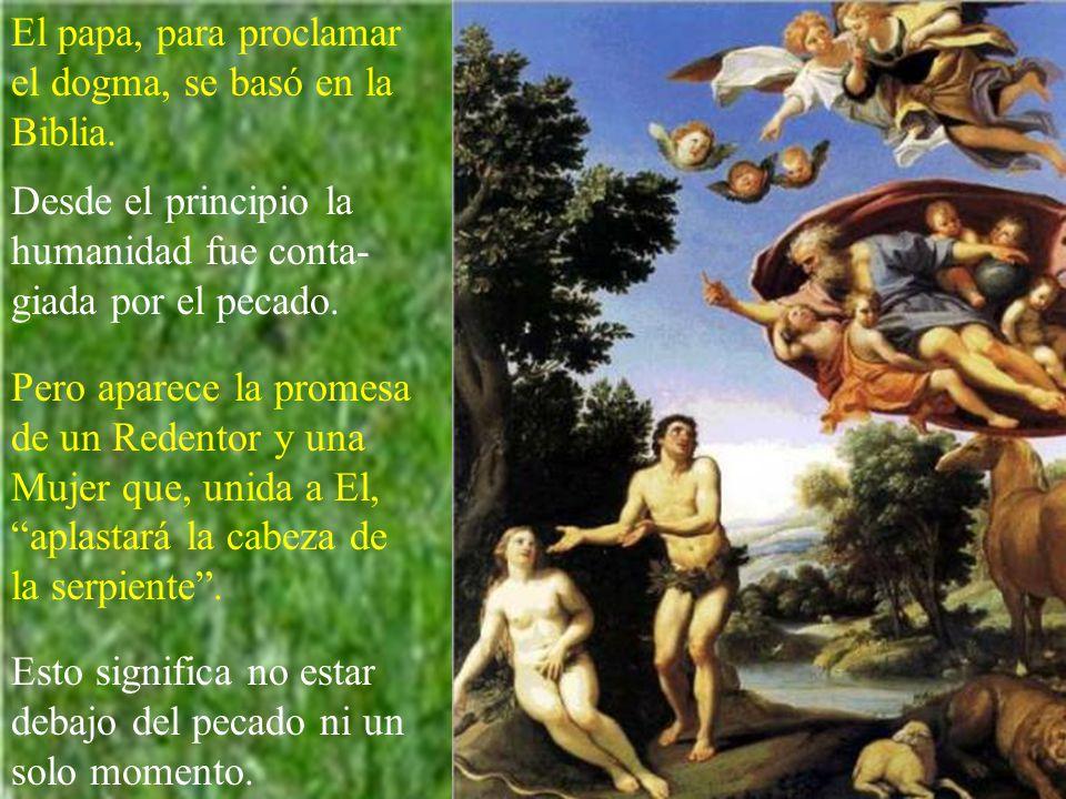 El papa, para proclamar el dogma, se basó en la Biblia.