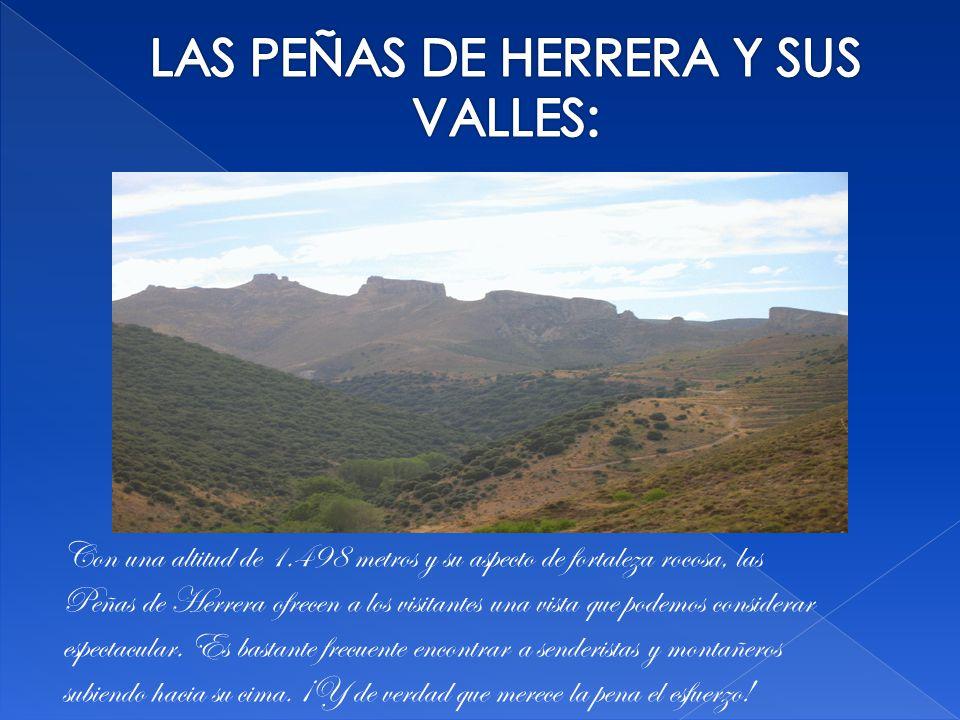 Con una altitud de 1.498 metros y su aspecto de fortaleza rocosa, las Peñas de Herrera ofrecen a los visitantes una vista que podemos considerar espectacular.