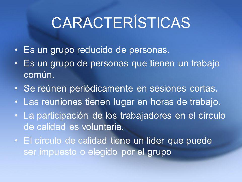 CARACTERÍSTICAS Es un grupo reducido de personas. Es un grupo de personas que tienen un trabajo común. Se reúnen periódicamente en sesiones cortas. La