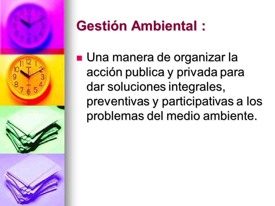 Gestión Ambiental : Una manera de organizar la acción publica y privada para dar soluciones integrales, preventivas y participativas a los problemas d