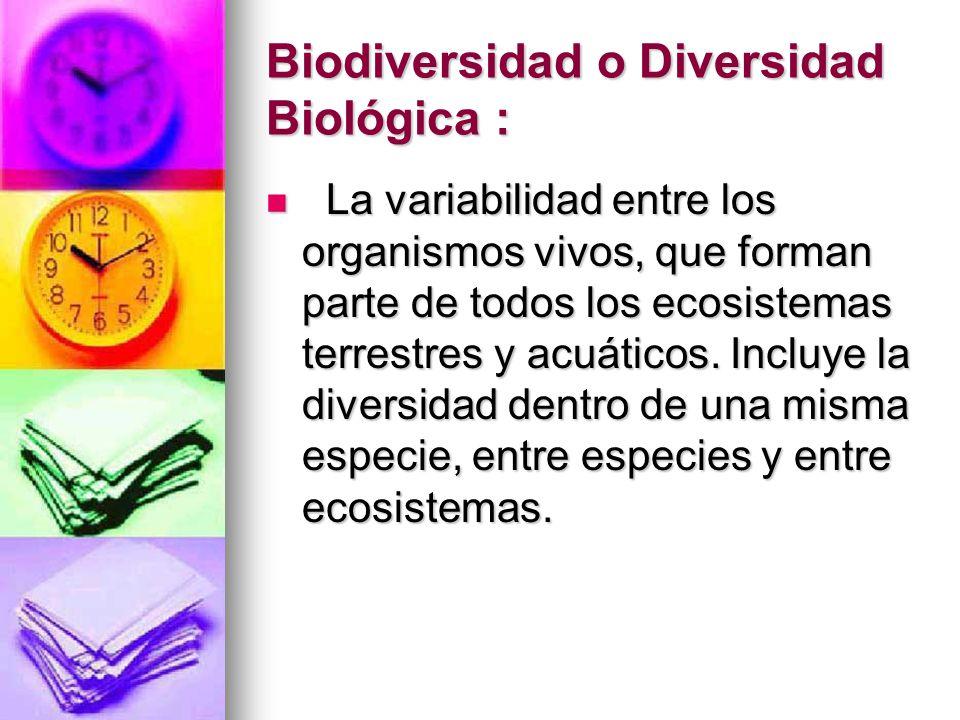 Biodiversidad o Diversidad Biológica : La variabilidad entre los organismos vivos, que forman parte de todos los ecosistemas terrestres y acuáticos. I