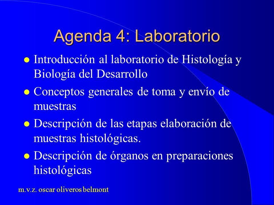 m.v.z. oscar oliveros belmont Agenda 4: Laboratorio l Introducción al laboratorio de Histología y Biología del Desarrollo l Conceptos generales de tom
