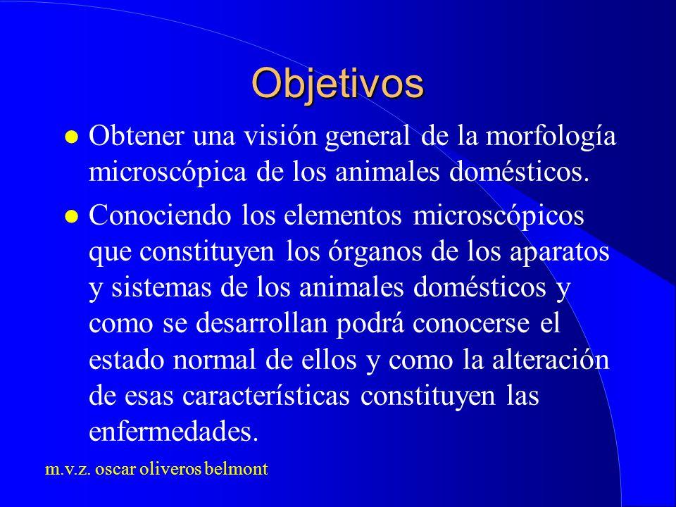 m.v.z. oscar oliveros belmont Objetivos l Obtener una visión general de la morfología microscópica de los animales domésticos. l Conociendo los elemen