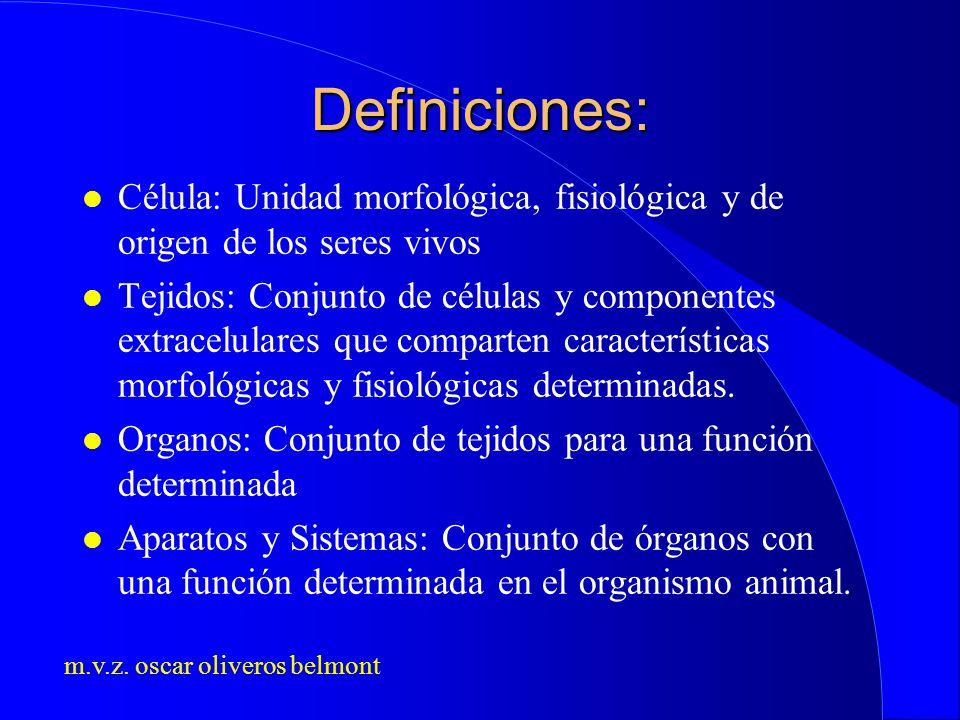 m.v.z. oscar oliveros belmont Definiciones: l Célula: Unidad morfológica, fisiológica y de origen de los seres vivos l Tejidos: Conjunto de células y