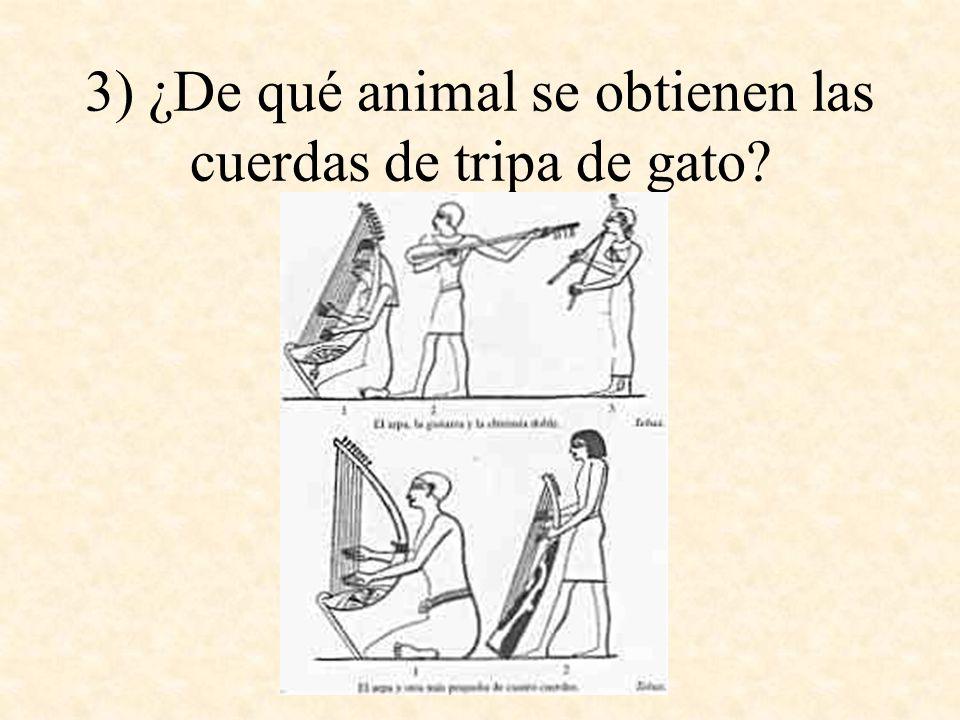 3) ¿De qué animal se obtienen las cuerdas de tripa de gato?