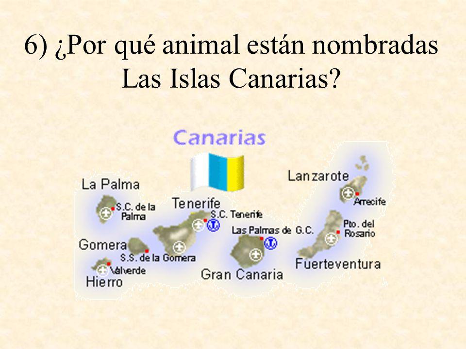 6) ¿Por qué animal están nombradas Las Islas Canarias?