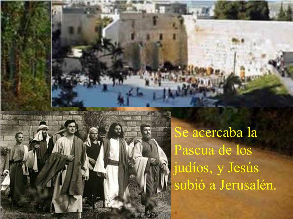 Jesús arroja a los mercaderes del templo. Está tomado del evangelio de san Juan. Jn 2, 13-25 Dice así: