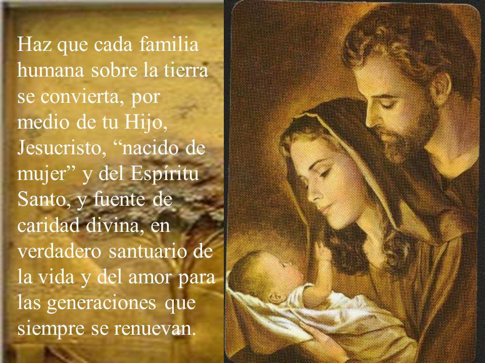 Oh Dios, de quien procede toda pater- nidad en el cielo y la tierra, Padre, que eres amor y vida,