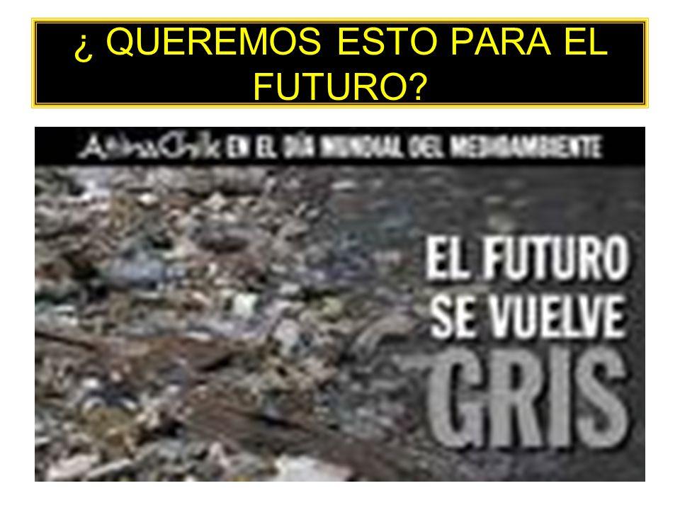 ¿ QUEREMOS ESTO PARA EL FUTURO?