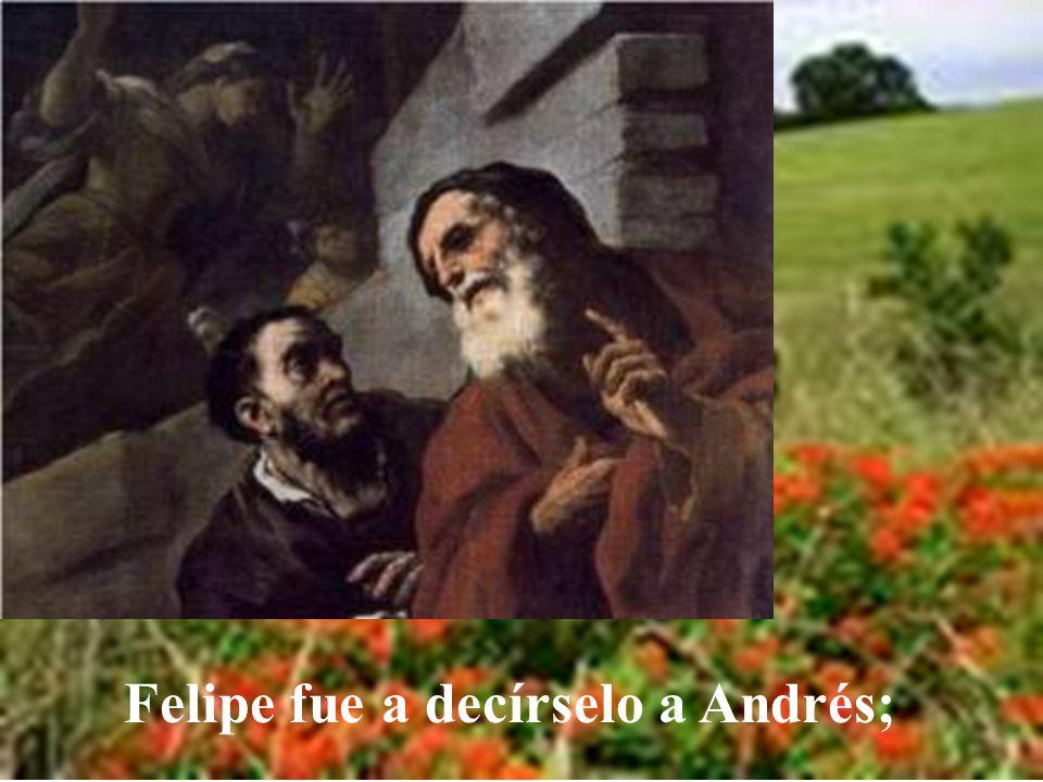 Estos, acercándose a Felipe, el de Betsaida de Galilea, le rogaban: Señor, quisiéra- mos ver a Jesús.